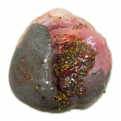 Kosher Pickled Beef Tongue